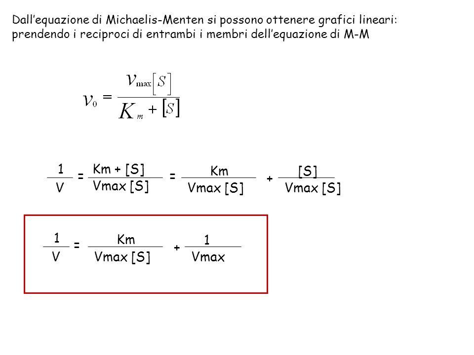 1 V = Km + [S] Vmax [S] Km [S] + Vmax